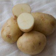patata-bianca-1-euro-kg