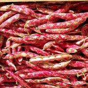 Fagioli borlotti, 6 euro al kg